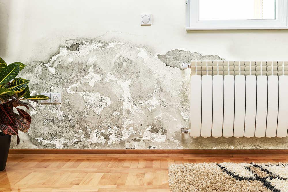 Solventar los problemas de humedades en el hogar, una buena manera de hacer hincapié en nuestra felicidad