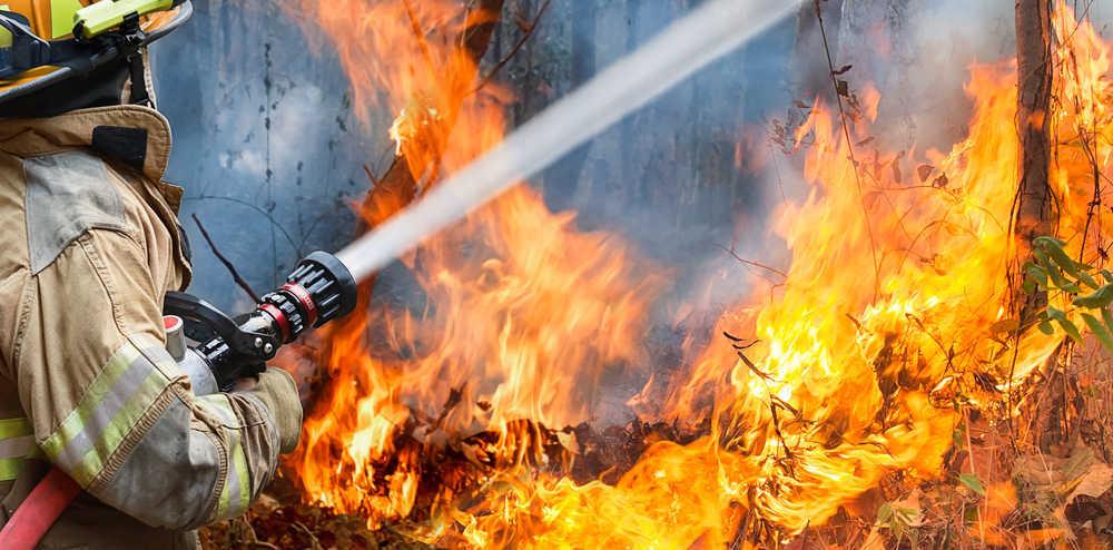 Los incendios forestales, una amenaza para el medio ambiente